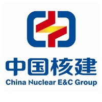 China China Nuclear EC GROUP Umsatz