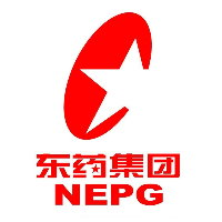 China NEPG Umsatz