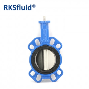 Butterfly valve with central disc in stainless steel