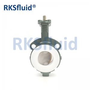 China Chinese butterfly valve DN65 3IN wafer lug PTFE PFA disc seat acid application