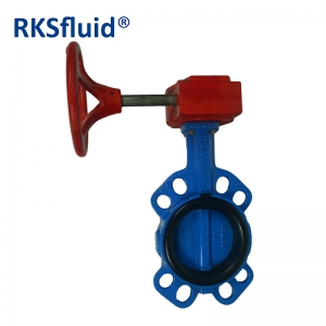 Chinese China Butterfly valve DN100 4IN wafer gare box hardware RKSfluid