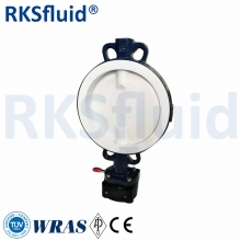 China Butterfly valve ptfe lined ptfe manual valve cl 150 ptfe seat factory