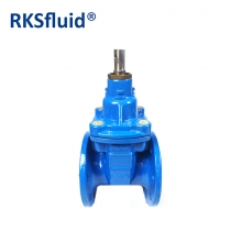 China PN16 handles ductile iron double flange sluice gate valve factory