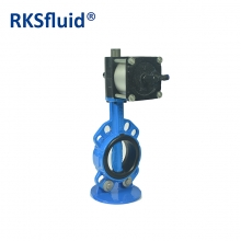 Pneumatic actuator nylon disc butterfly valve